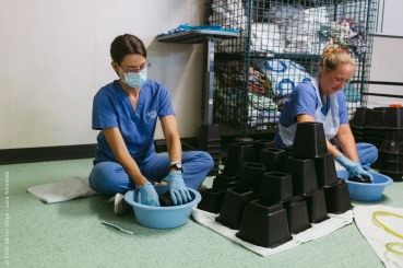 Rebecca Peace, Ward Nurse, cleaning in the wards at the end of the field service.